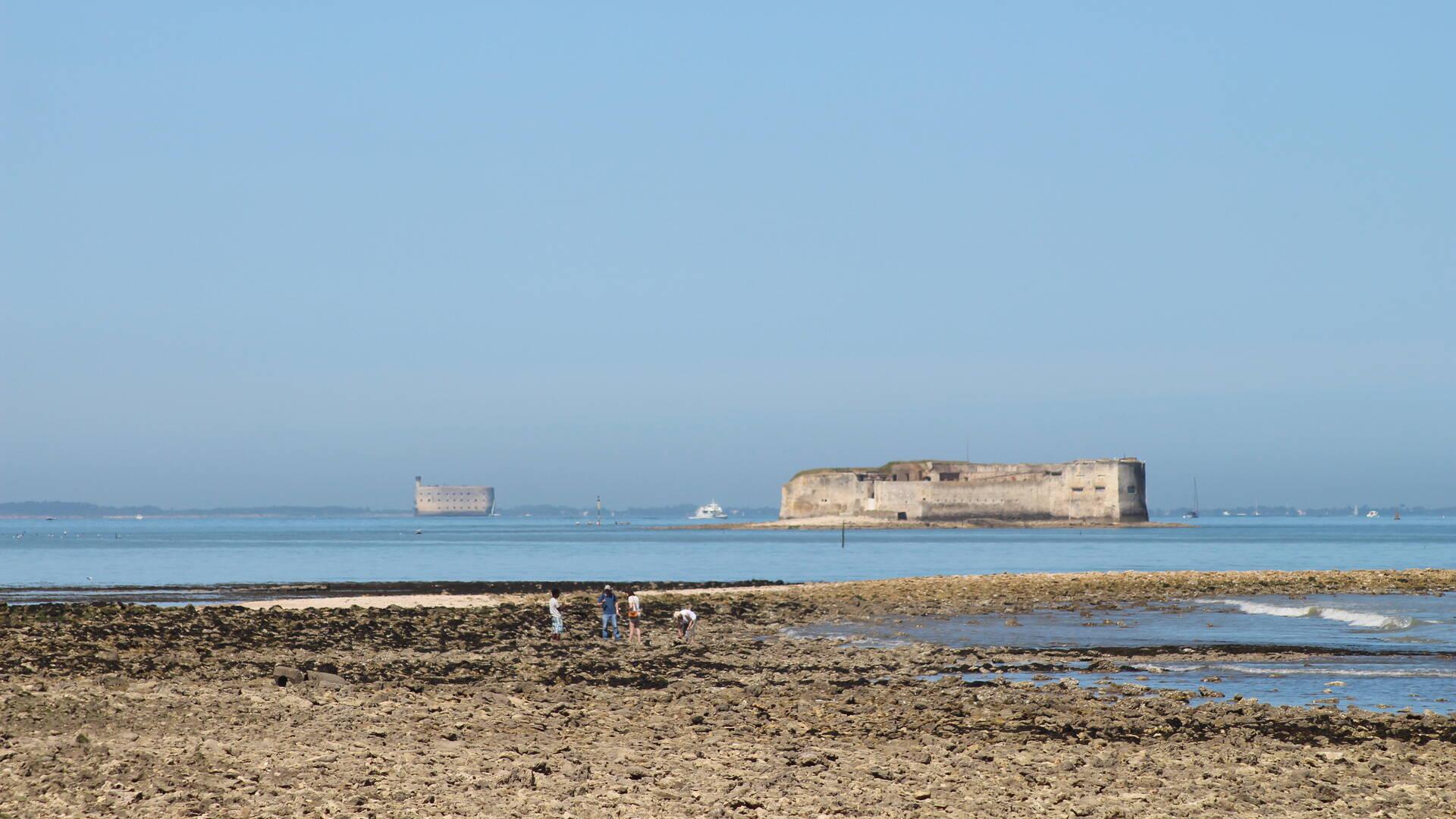 Vue sur fort Enet et fort Boyard, Pointe de la Fumée à Fouras-les-Bains © M. Domenici