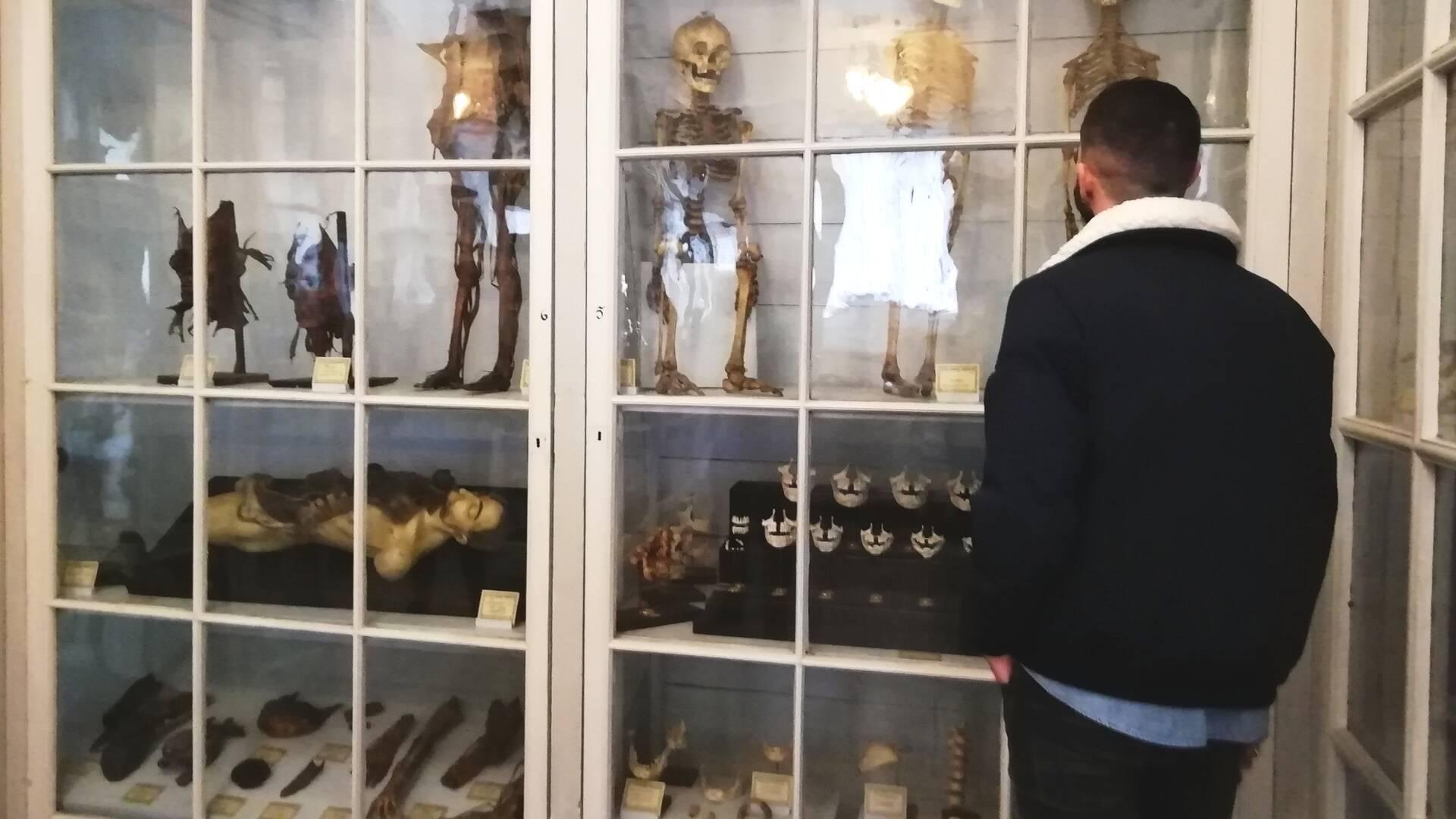 Des collections destinées à former les futurs médecins