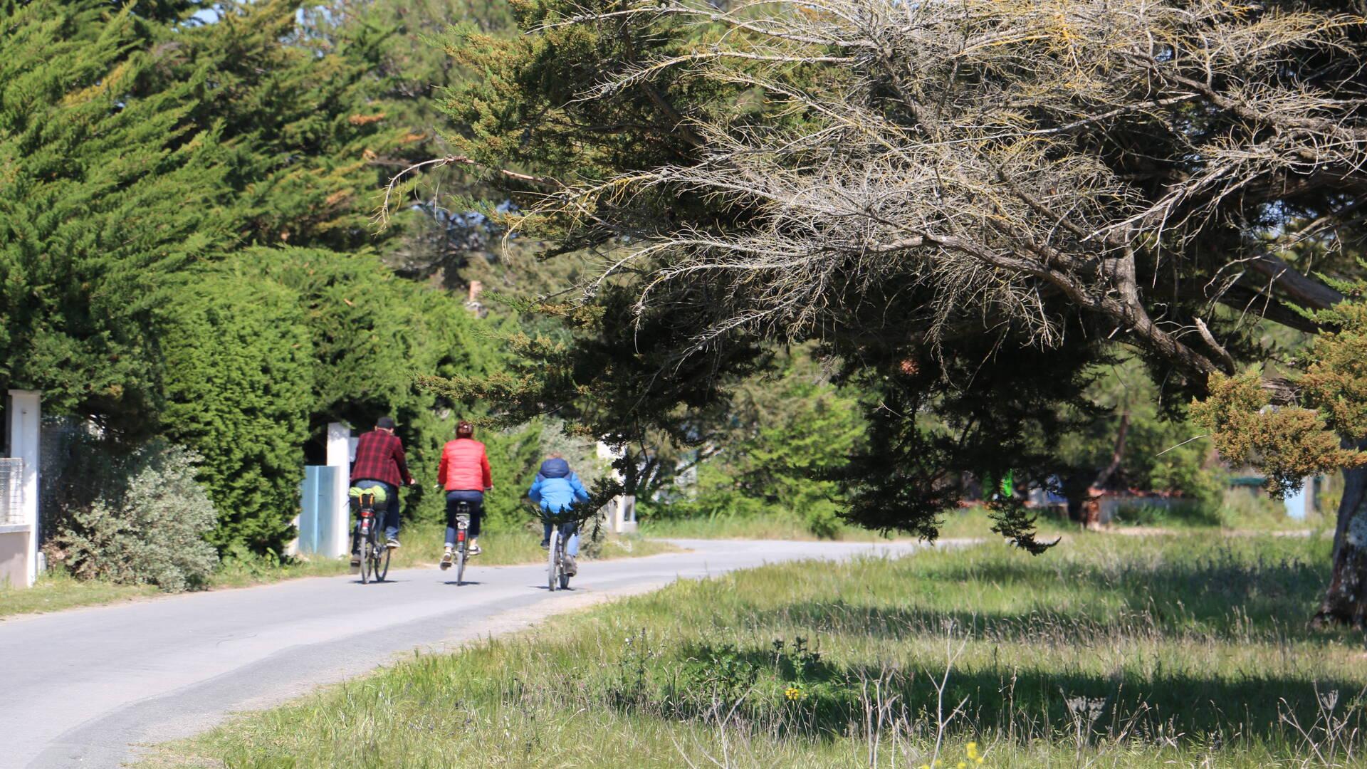 Balade en vélos, île d'Aix © M. Domenici