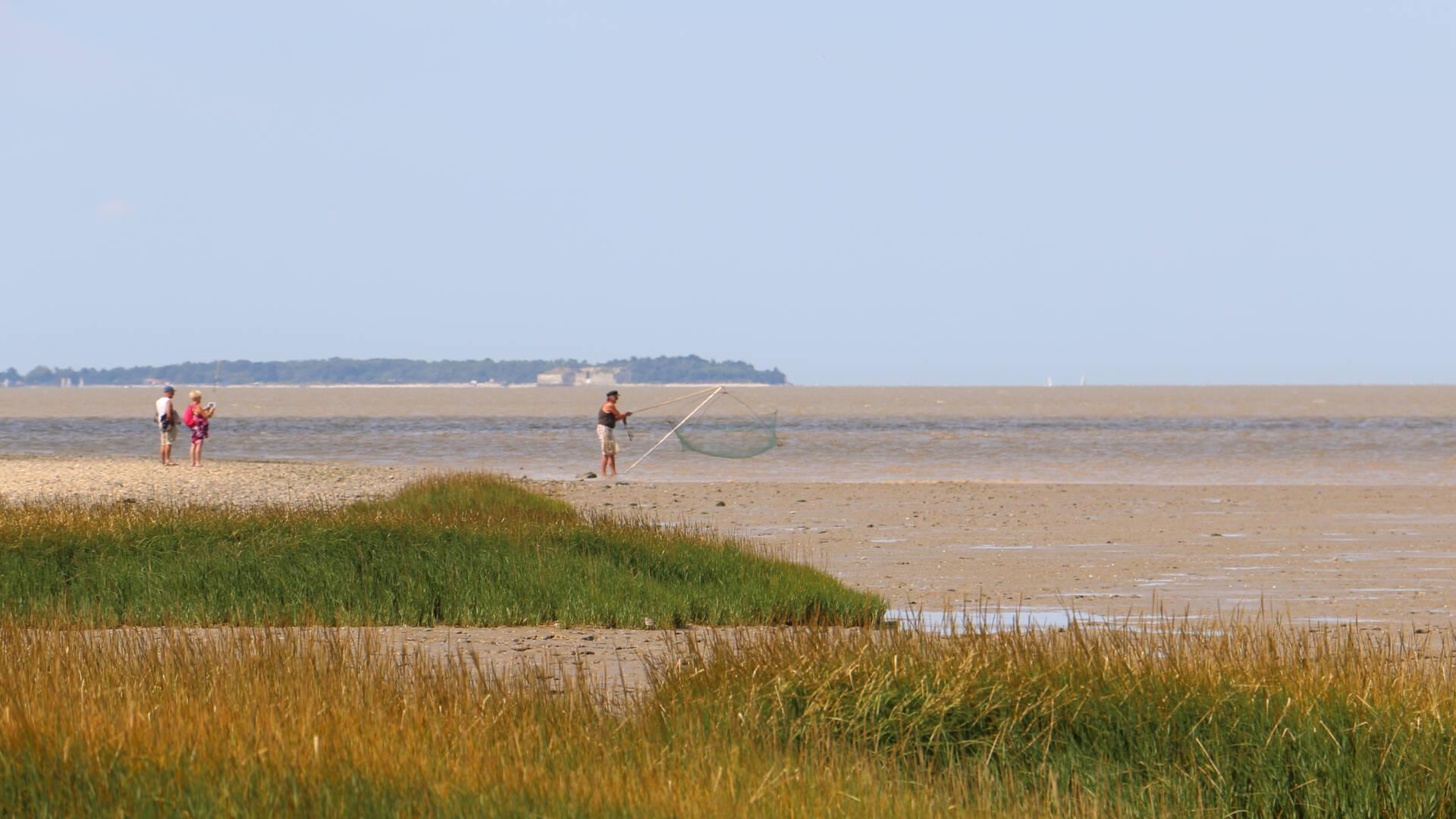 Pêcheur sur la Passe-aux-Boeufs, île Madame