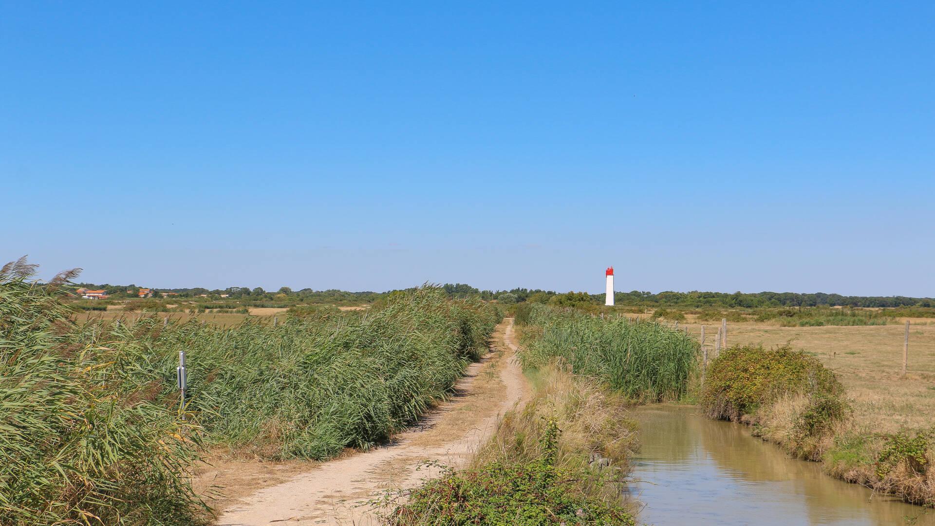 marais-soumard-velo-fouras-les-bains-rochefort-ocean©Caroline Jarry