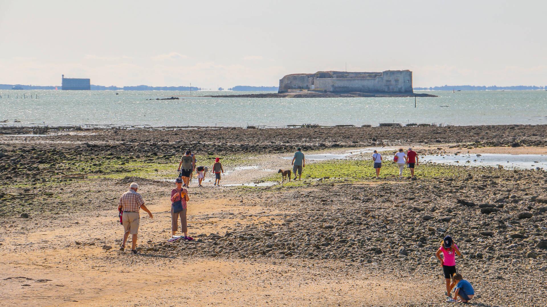 Pêche à pied, fort Enet et Boyard, Pointe de la Fumée, Fouras-les-Bains, Rochefort Océan