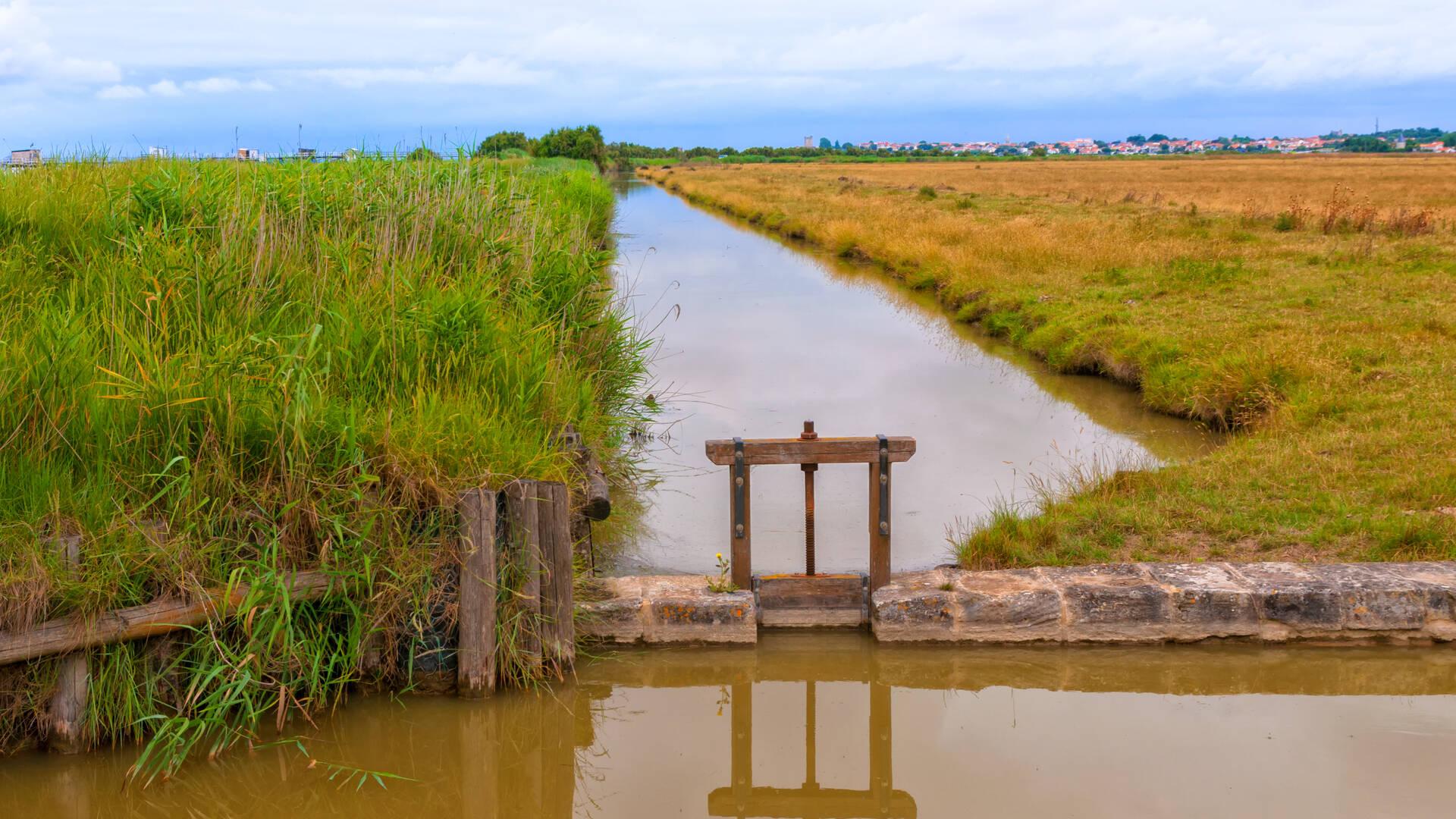 Les canaux du marais de Soumard - Rochefort Océan