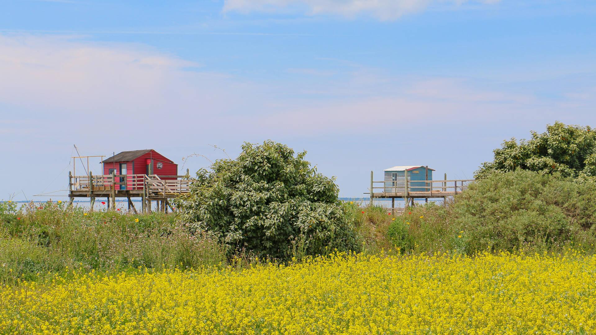 L'île Madame et ses carrelets, Rochefort Océan