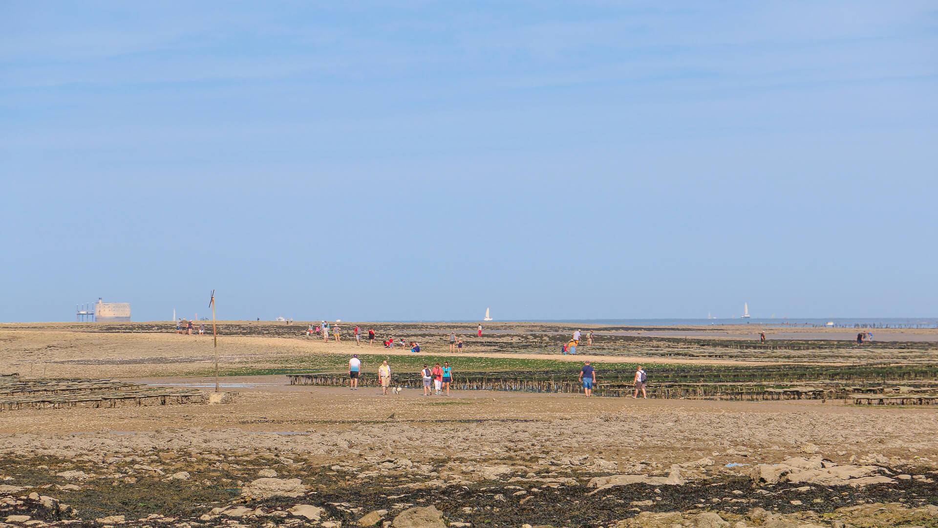 Ile Madame, la Passe aux filles, vue sur Fort Boyard ©M.De Villartay