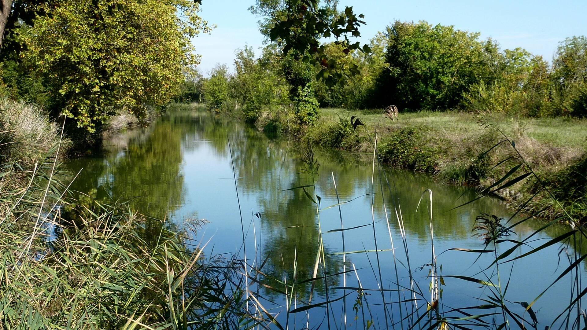 rochefort-ocean-peche-eau-douce-canal-de-Charras © Fédération départementale pour la pêche et la protection du milieu aquatique