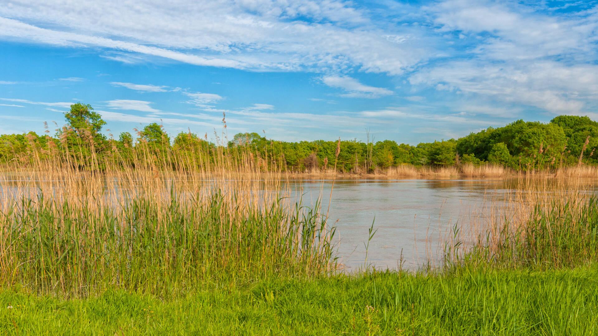 Le fleuve Charente - Rochefort Océan