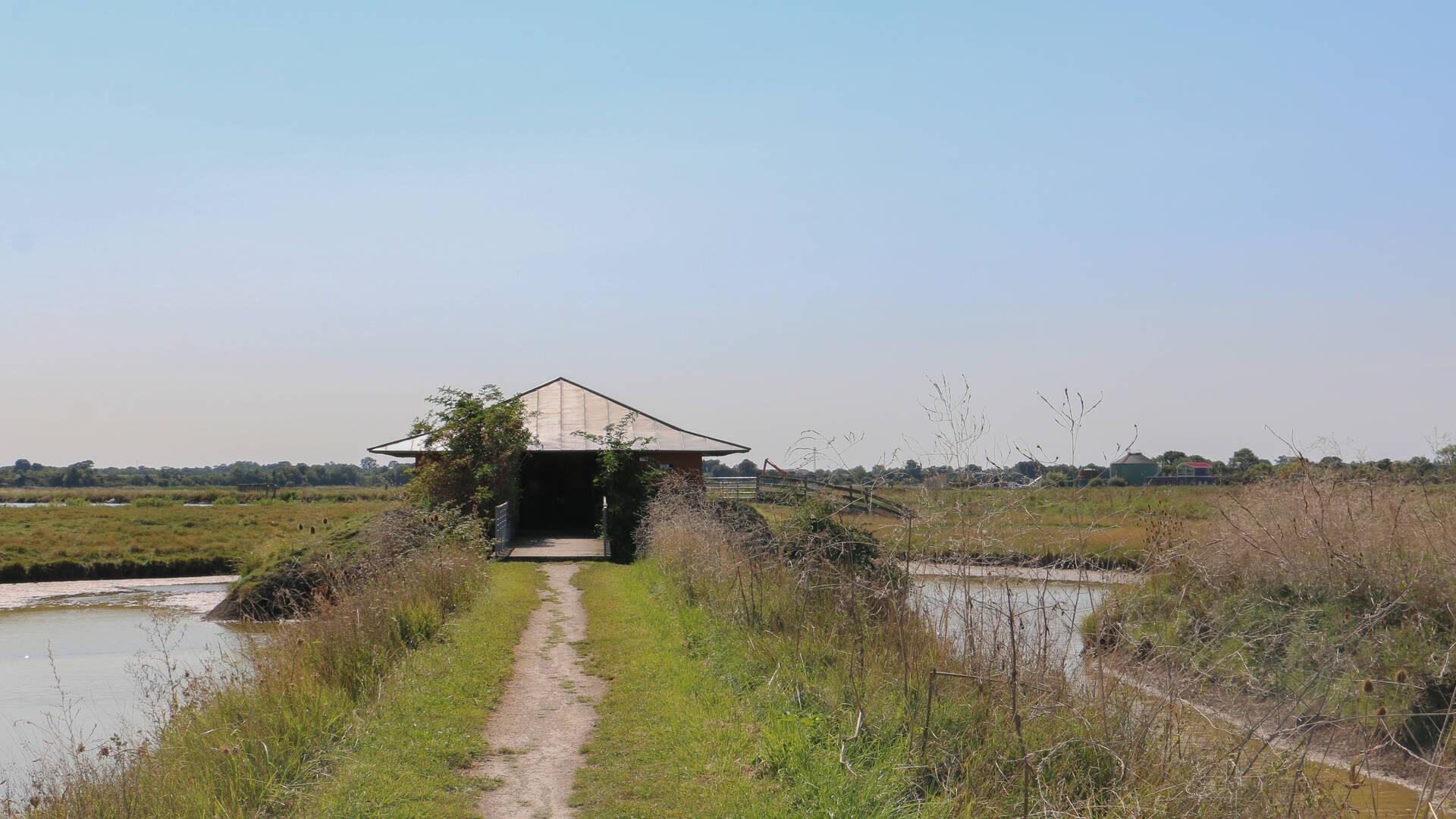 Observatoire dans les marais périurbain de Rochefort