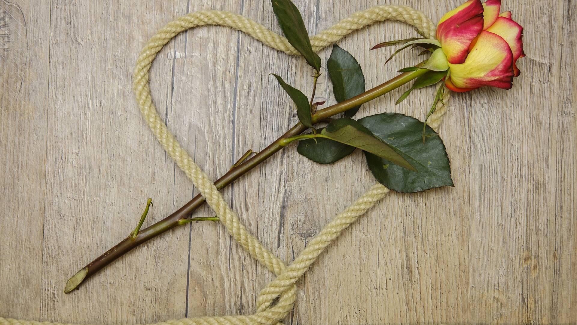 Un cordage pour lui prouver votre amour ? © Pixabay