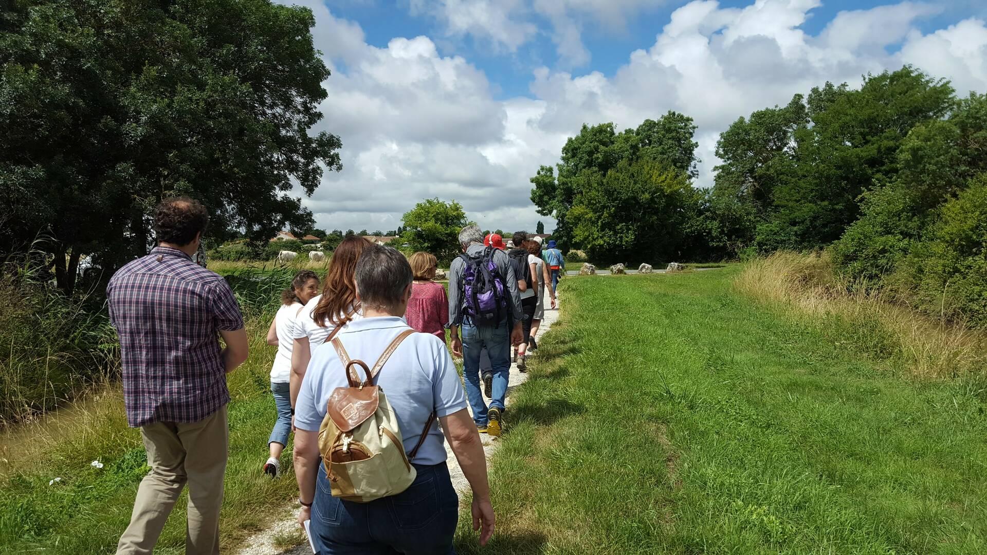 A la découverte des bords de Charente©CE