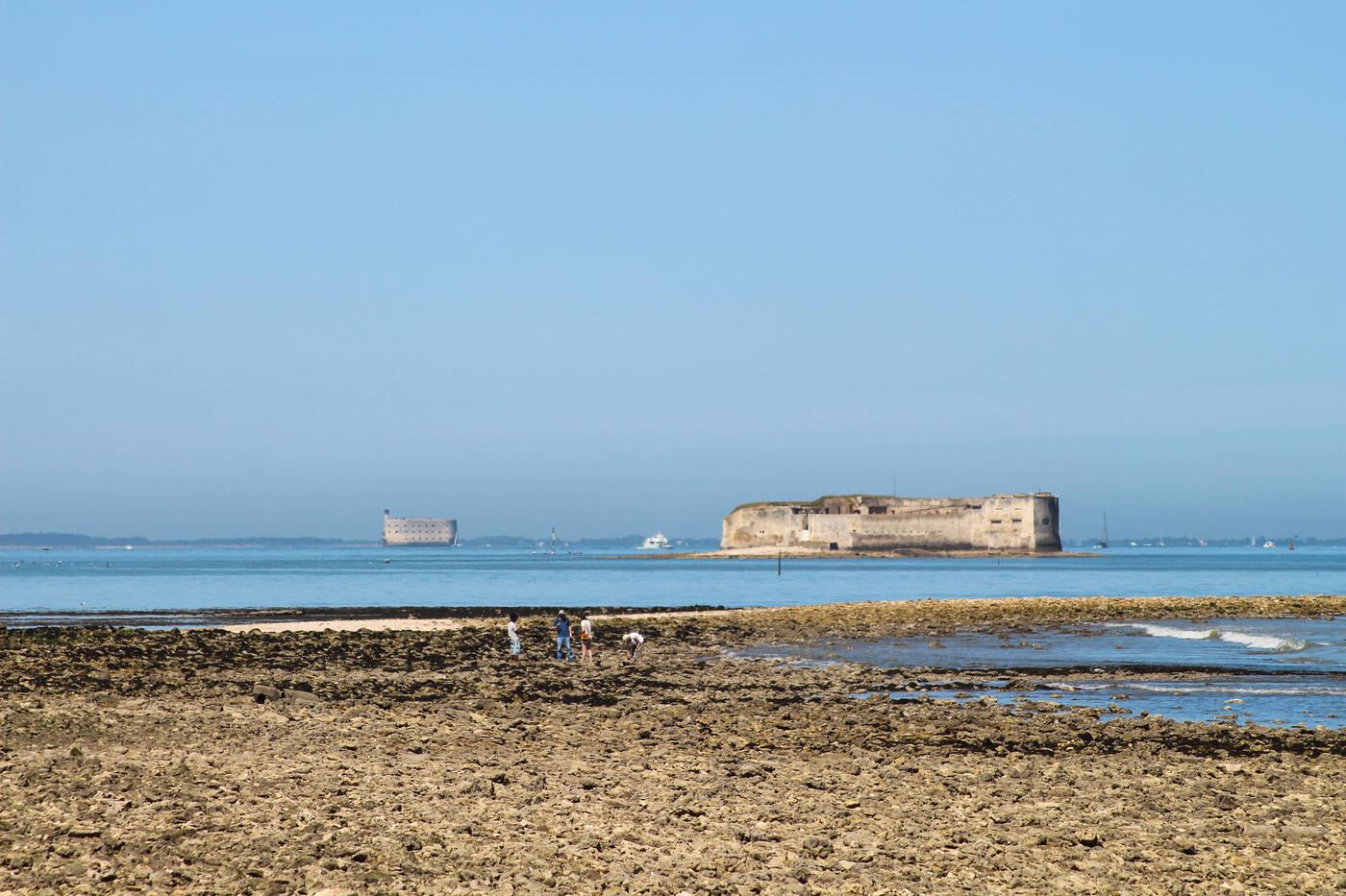 La route des forts du littoral charentais office de tourisme de rochefort oc an vacances - Office de tourisme rochefort ocean ...