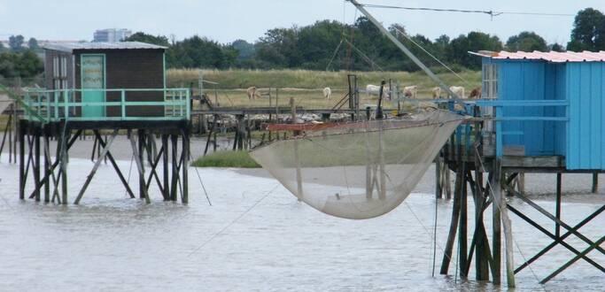 Pêche au carrelet à Rochefort Océan