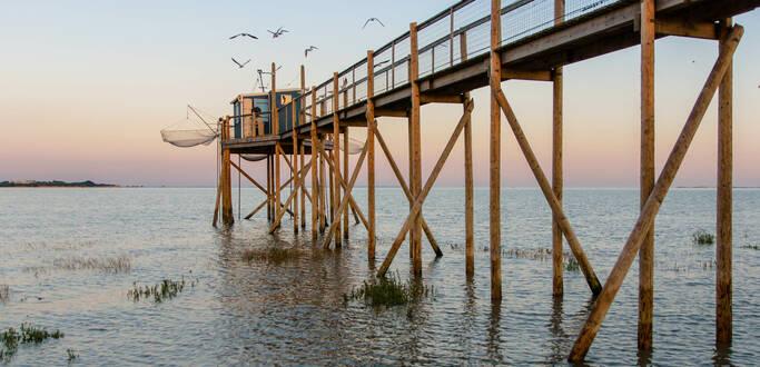 Envie de nature à Rochefort Océan