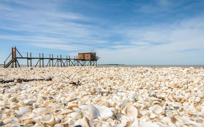 Explorer le littoral… de chez soi !