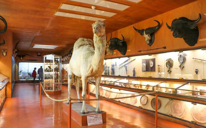 Musée Africain de l'île d'Aix