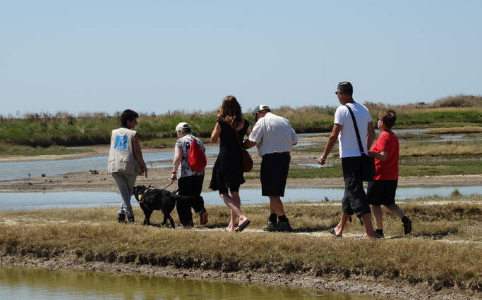 Visite avec personne malvoyante  à la réserve naturelle de Moëze Oléron©OTRO