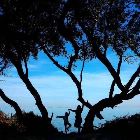 Les Sylphides de l'île d'Aix - © Petibowom