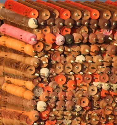 Ostréiculture - Collecteurs pour le capatage des larves en mer, Fouras-les-Bains, Rochefort océan