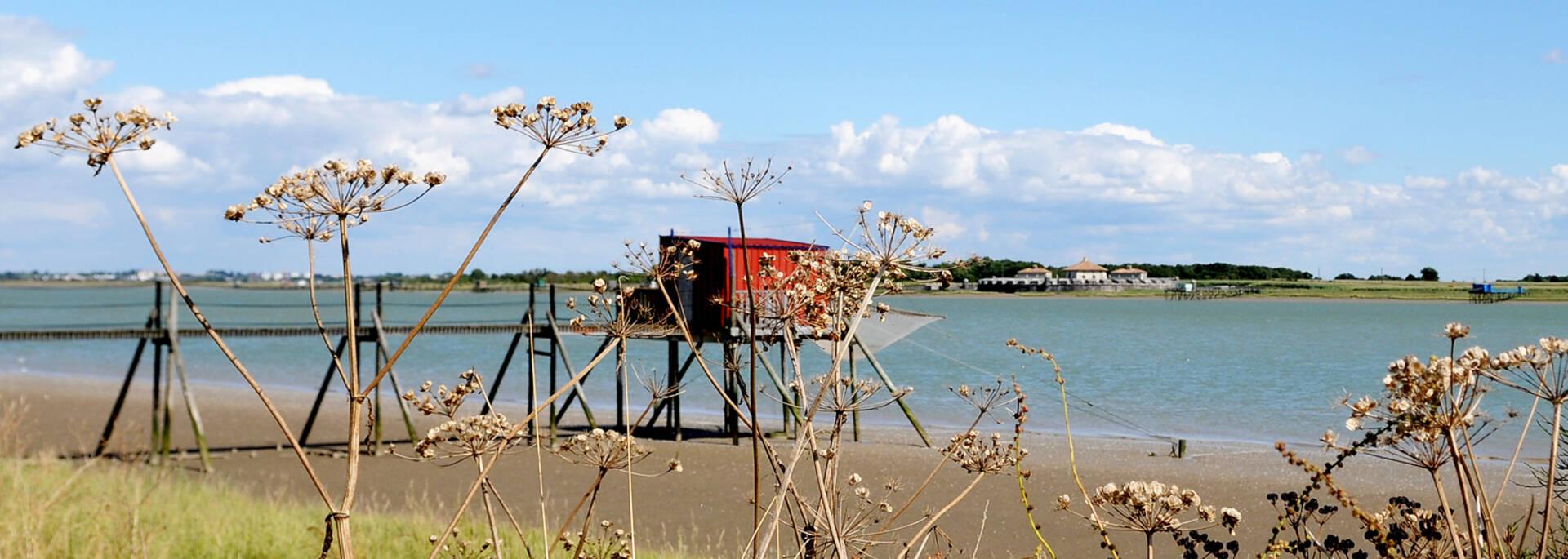 Le fort Lupin en arrière plan depuis les marais de Soumard - © Marie-Françoise Boufflet