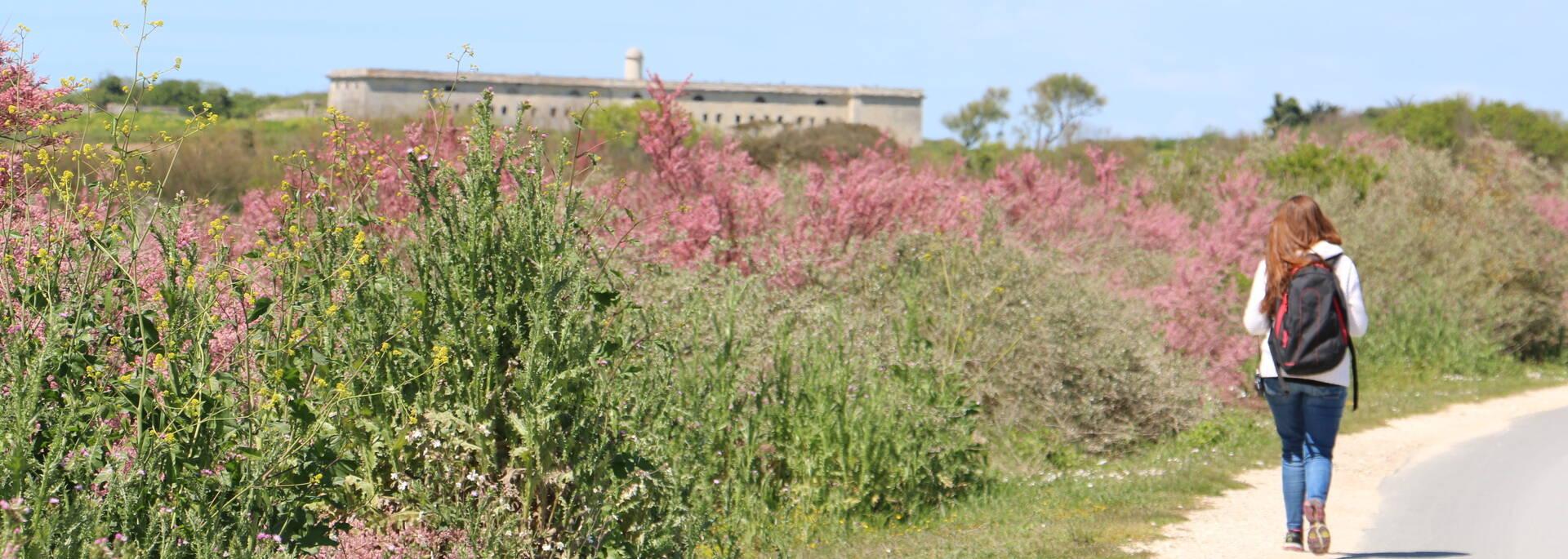 Promenade à pied en direction du fort de l'île Madame - © Office de tourisme Rochefort Océan
