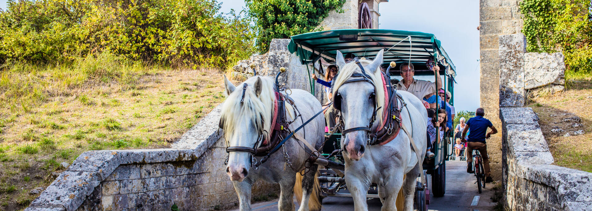 Guided visit of Aix Island by a horse drawn carriage- © Images & Emotion