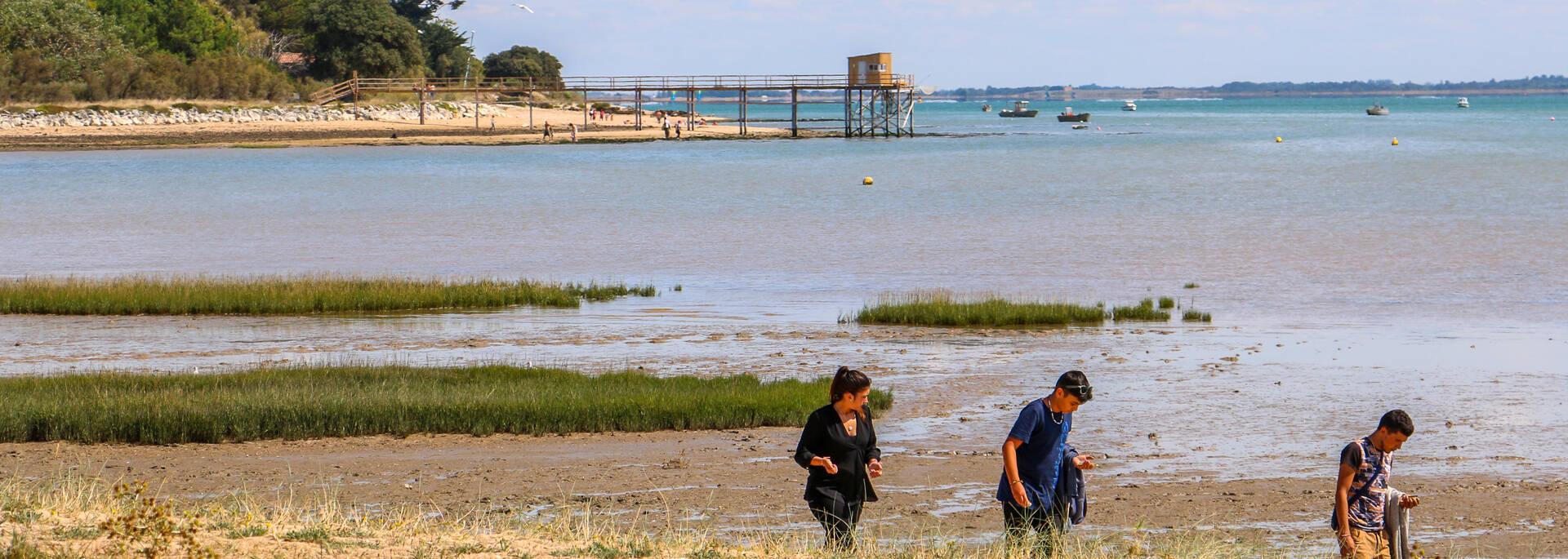 Plage de l'Anse du Saillant à l'île d'Aix - © Office de Tourisme Rochefort Océan