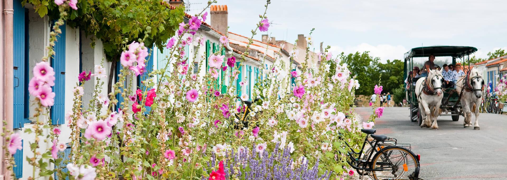 Tour commenté de l'île d'Aix en calèche - © Pascal Robin