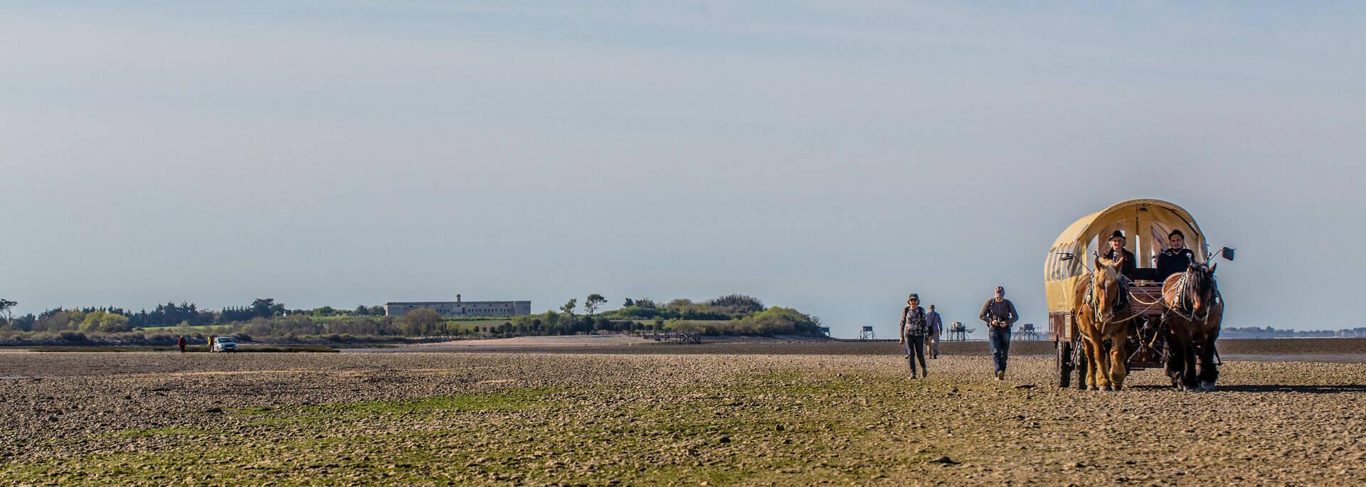 Tour de l'île Madame avec les Calèches de Madame - © Images & Emotion