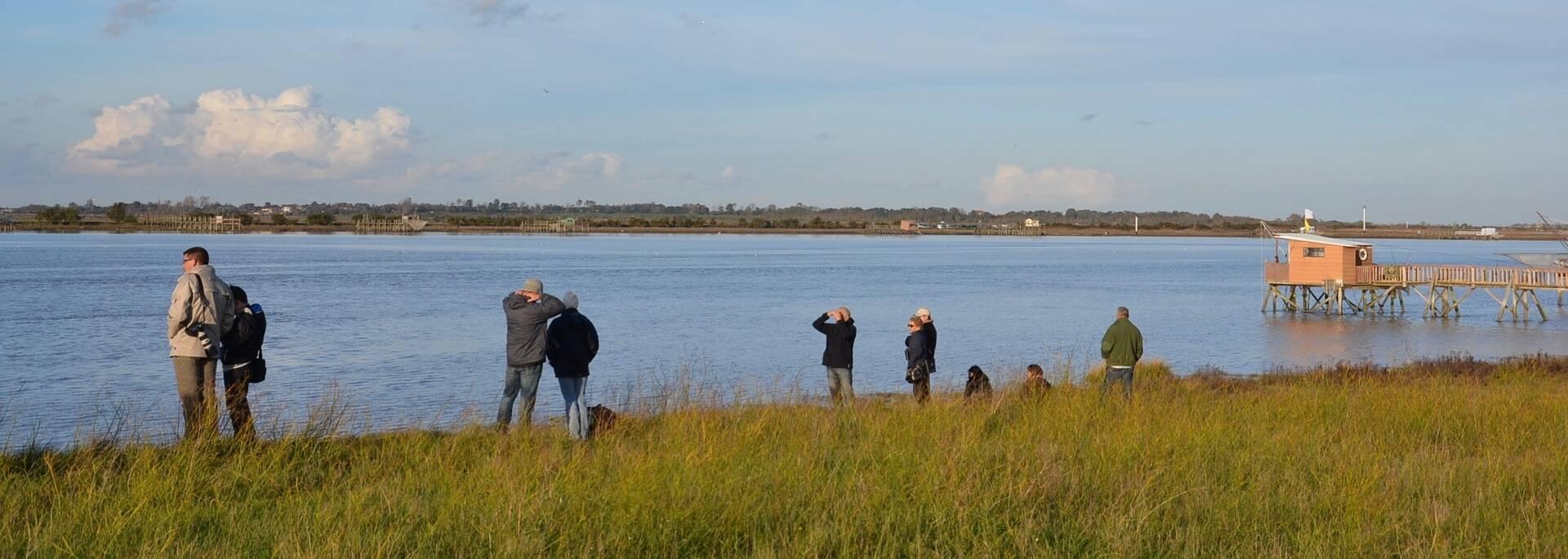 Promeneurs sur l'estuaire de la Charente - © Samuel Courtois