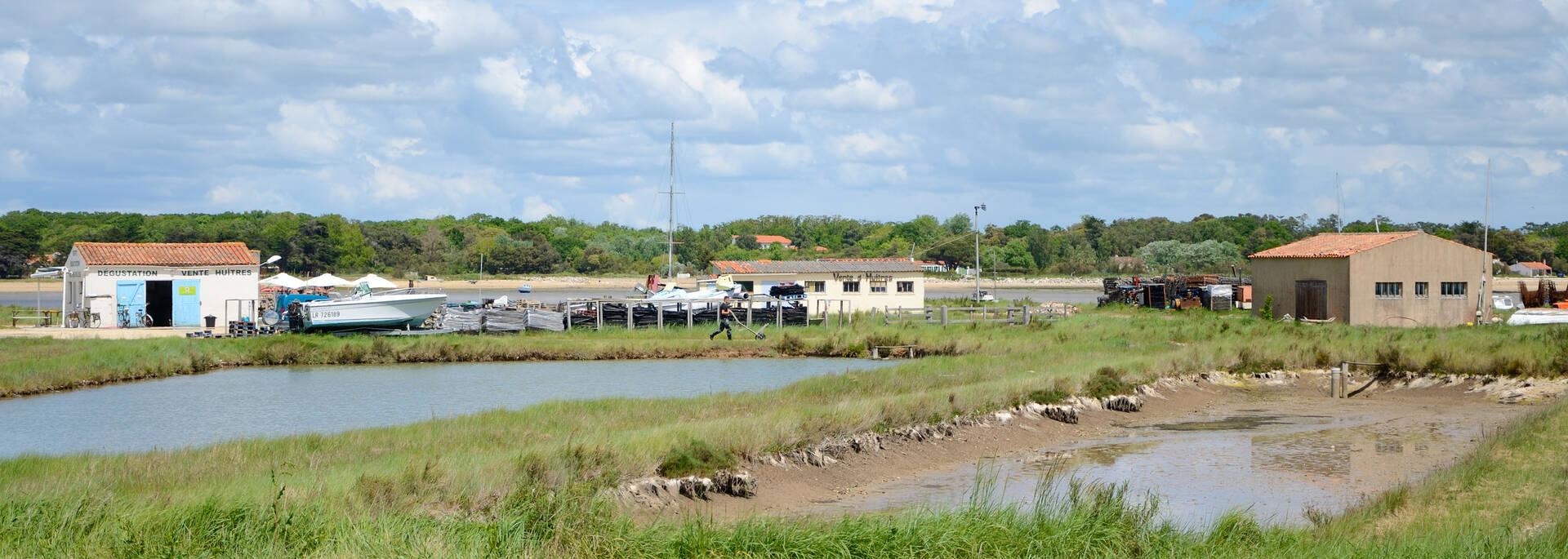 L ostr iculture au pays de fort boyard office de tourisme de rochefort oc an vacances - Office du tourisme rochefort sur mer ...
