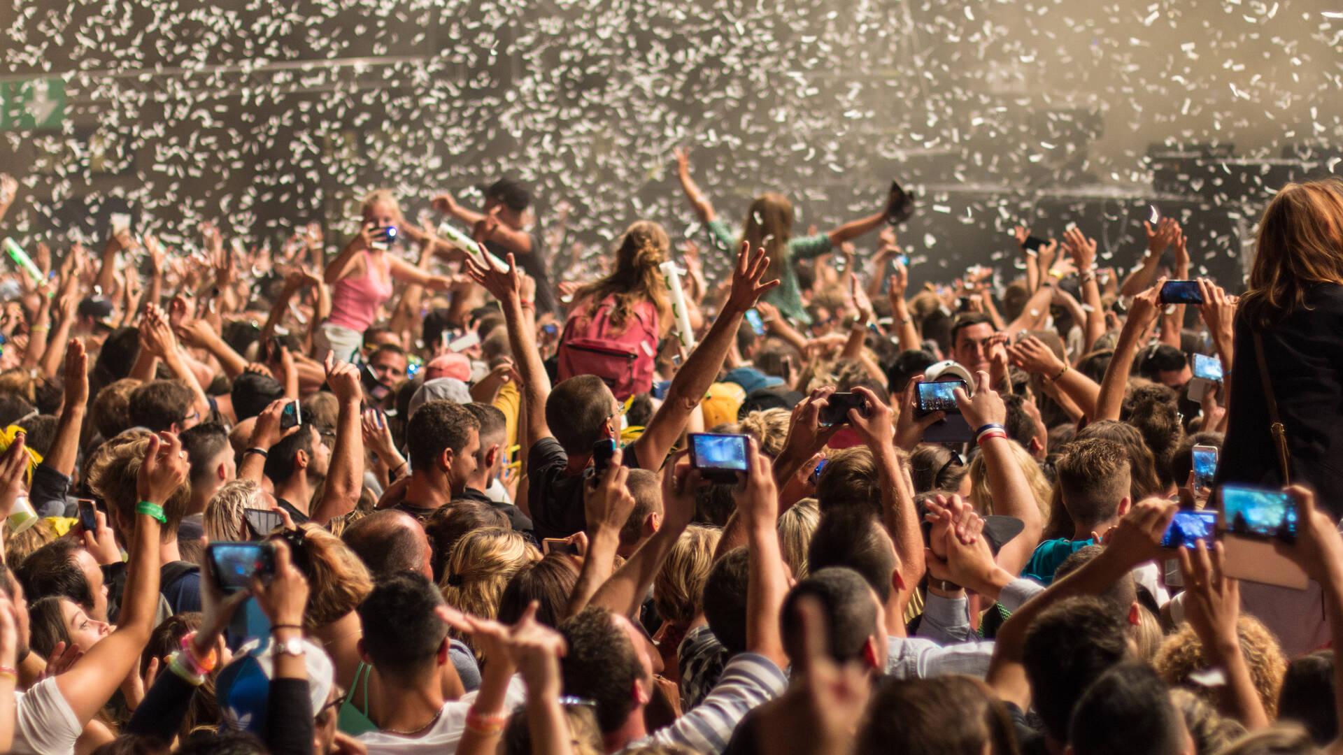 Quoi faire à Rochefort : le festival Electro Stereparc en juillet © David Compain