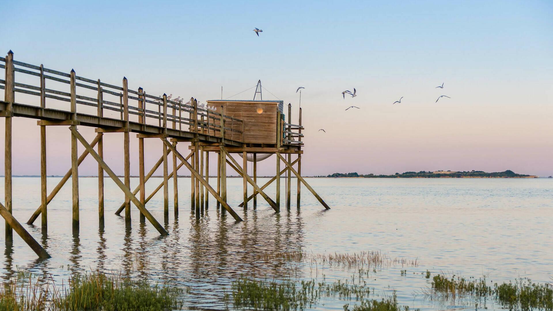 Carrelet sur l'estuaire face à l'ILe Madame ©L.Pétillon