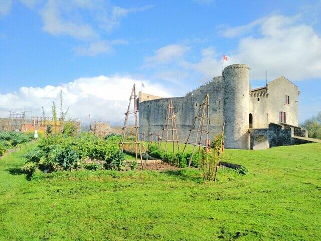 Grand parc autour du château de St Jean d'Angle © L.Texier