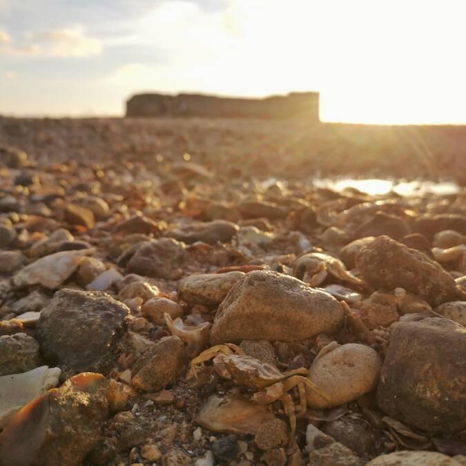 visite-guidee-fort-enet-fouras-les-bains-rochefort-ocean © Caroline Jarry