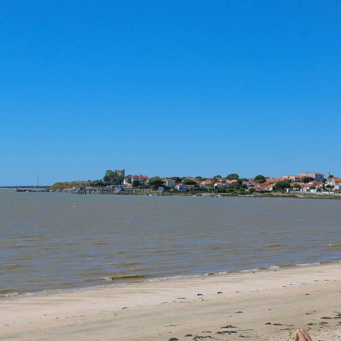 vue-fouras-les-bains-plage-espérance-rochefort-ocean©carolinejarry