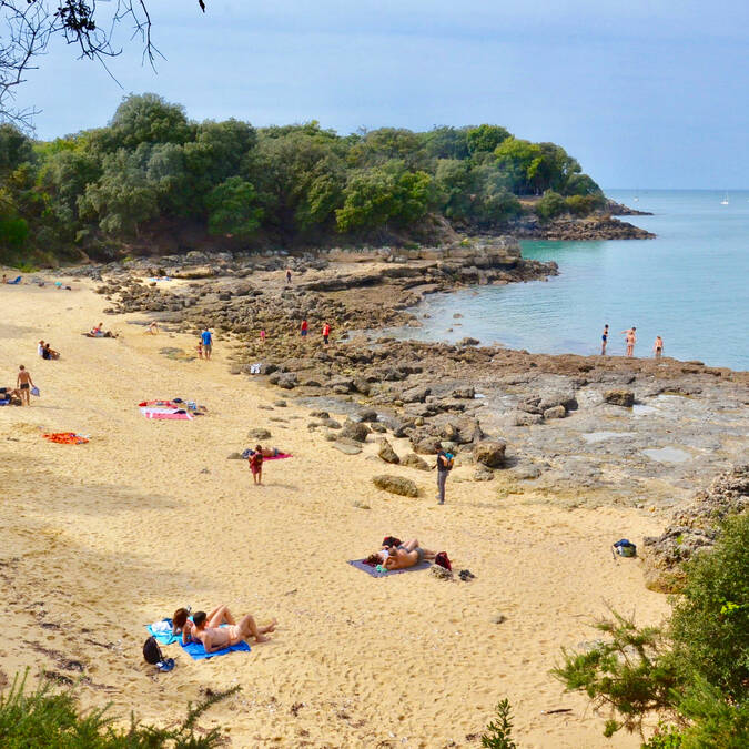 Baby plage, petite crique paradisiaque de l'île d'Aix - © Samuel Courtois