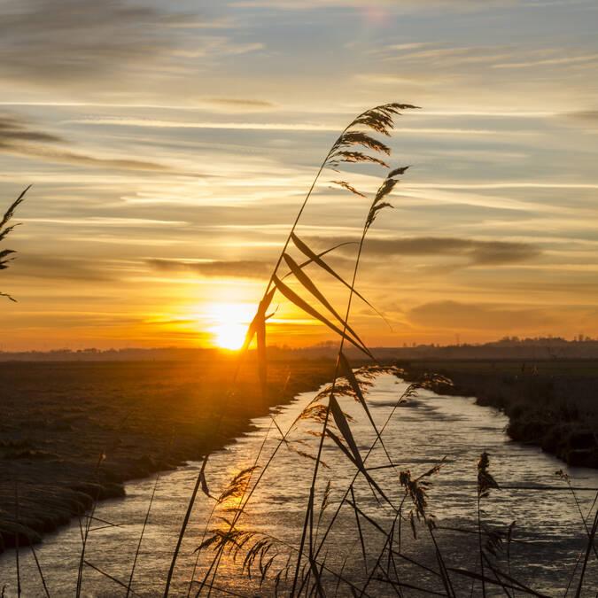 Sunset on the marshes - © Baptiste Chambard