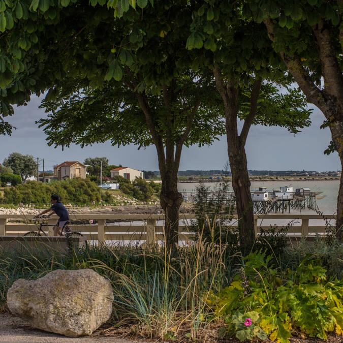 Promenade à vélo à fouras, Plage Sud - © Images & Émotion