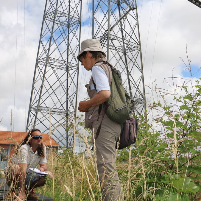 Nature outing at the foot of the Transporter Bridge - © Office de tourisme Rochefort Océan