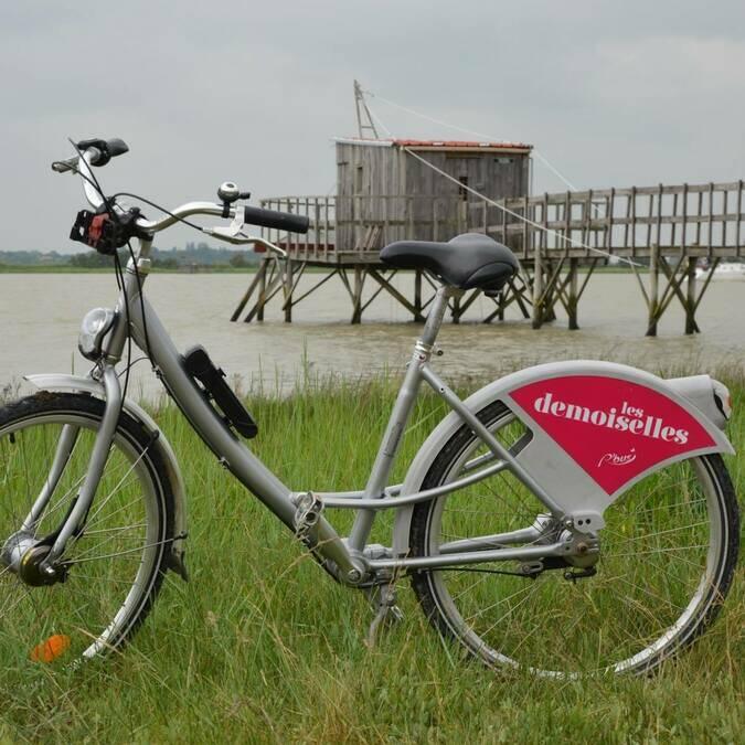 Louer un vélo au Bureau d'information Touristique de Port-des-Barques et emprunter les chemins de Charente - © A.L Momcilovic